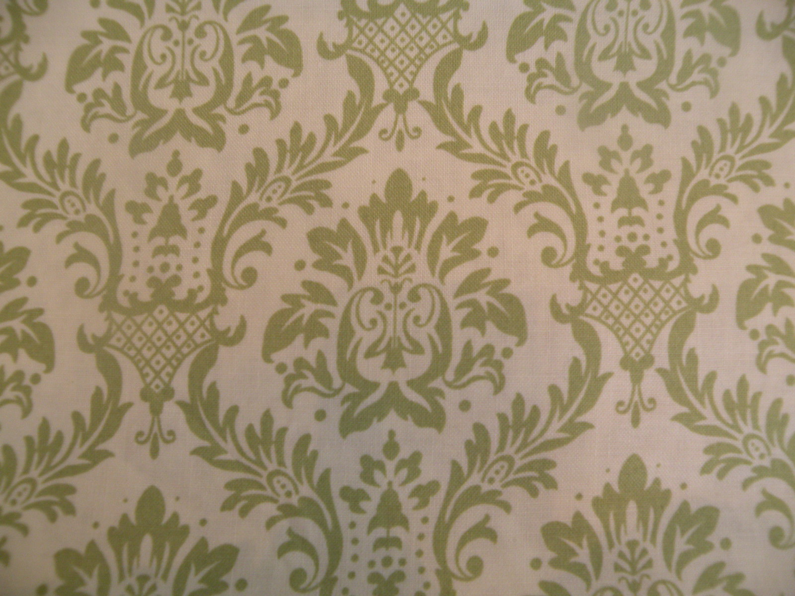 Green Damask on Cream